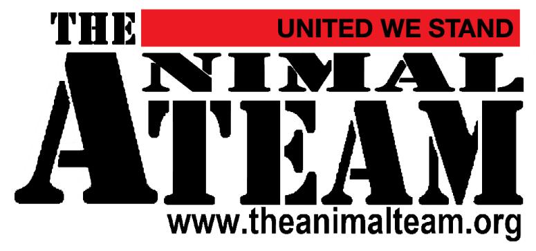 animalteam