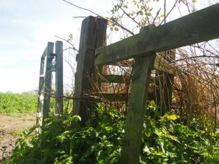 Gate to Stoneythorpe Hall