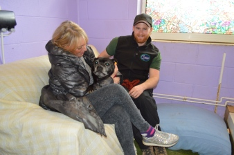 Worcestershire Animal Rescue