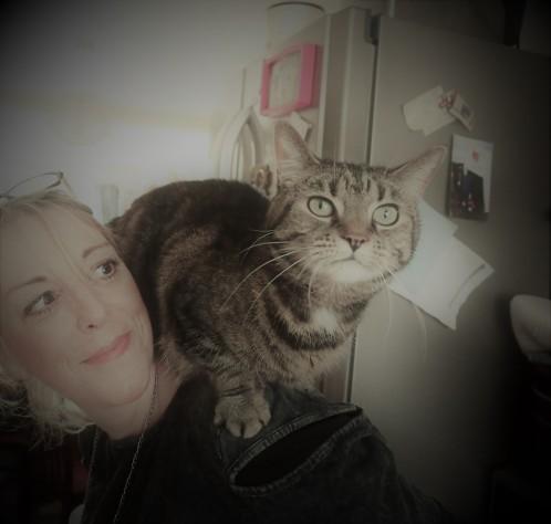 Leeds Cat Rescue