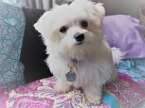 Evie aged 4 months