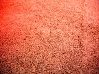 Carpet (yum)