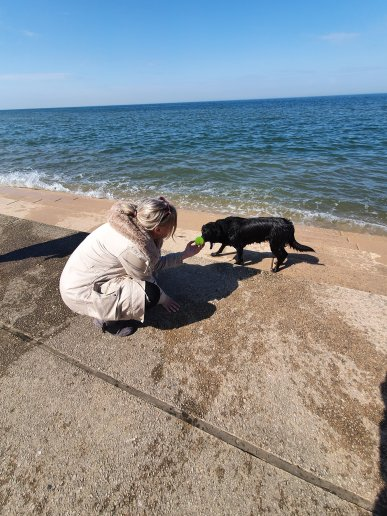 Lizzi Beach Doggy