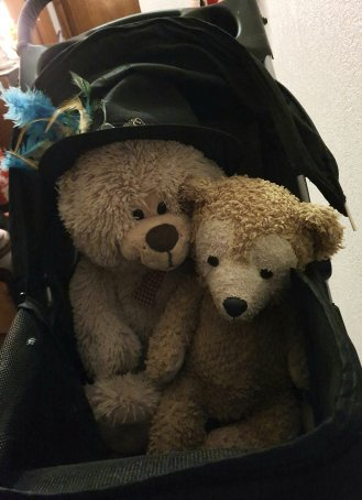 Rescue Bears